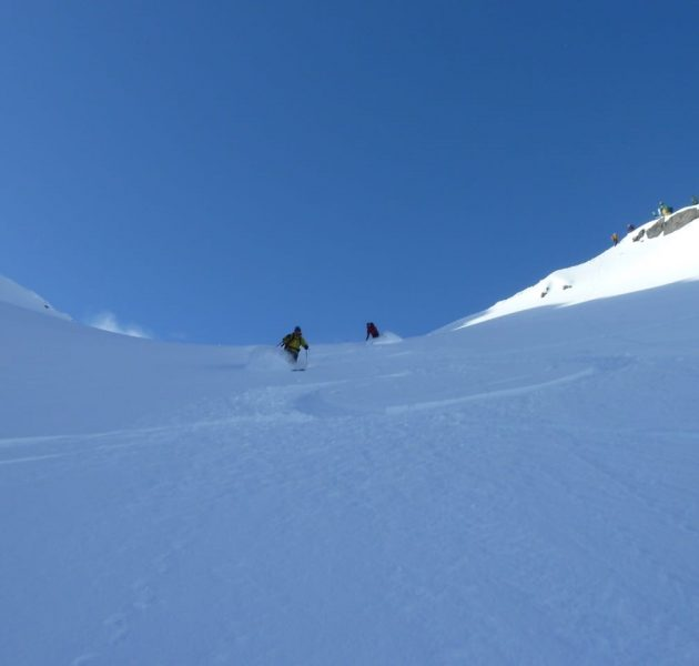 Trollfjord skiing